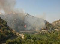 Italia brucia, i Carabinieri intervengono