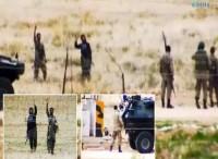 Terrorist organization arrested in...
