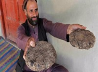 Hit by the novel coronavirus pandemic and war, Afghans have turned to opium cultivation for cash during this year's poppy harvest
